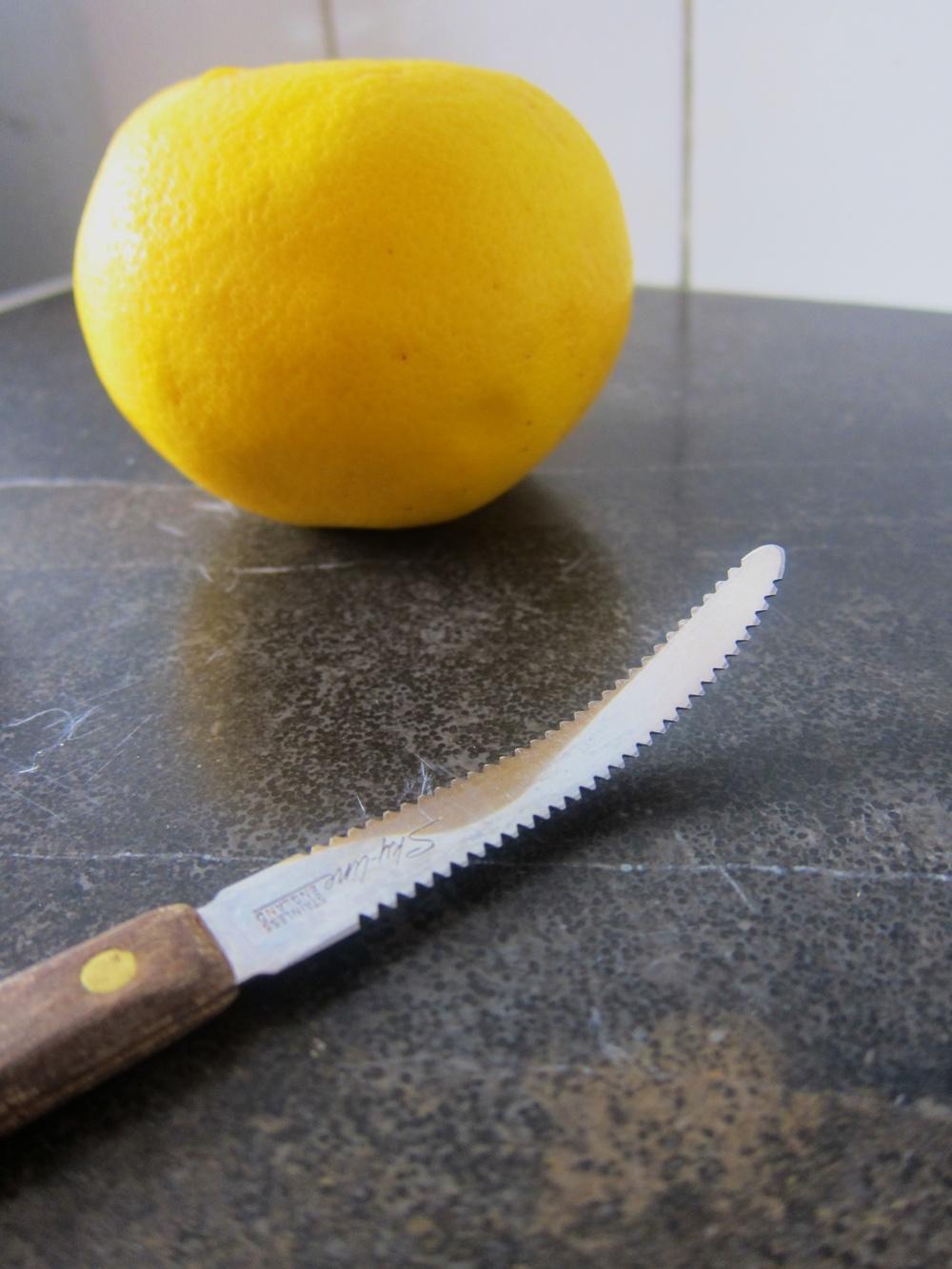 citrus_12.jpg