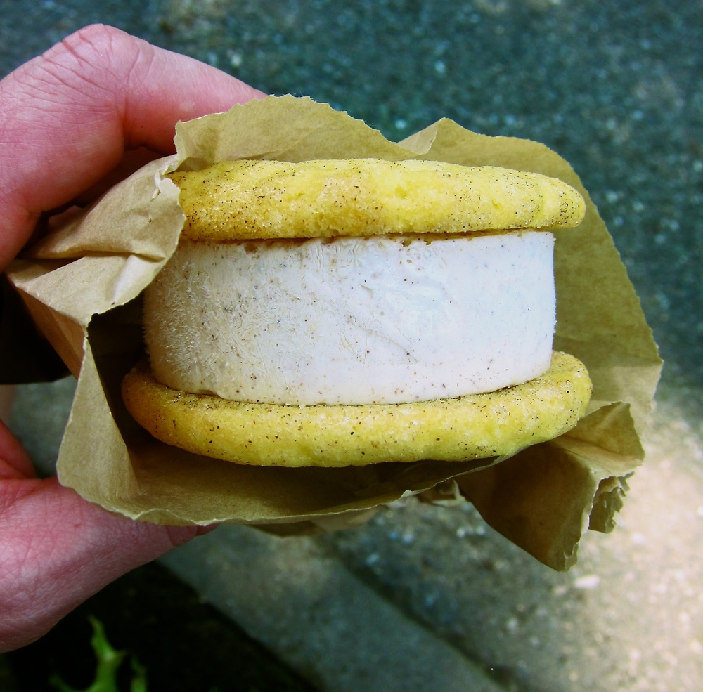 NYC_icecream_sandwich.jpg