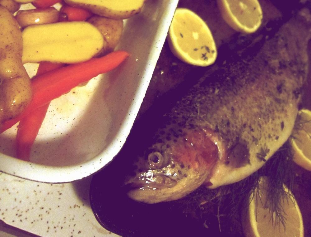 10 trout.jpg