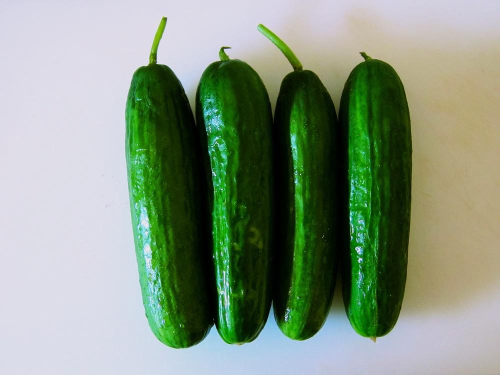 05 pickle.jpg
