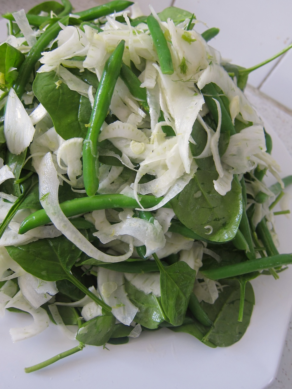 05 fennel_salad.jpg