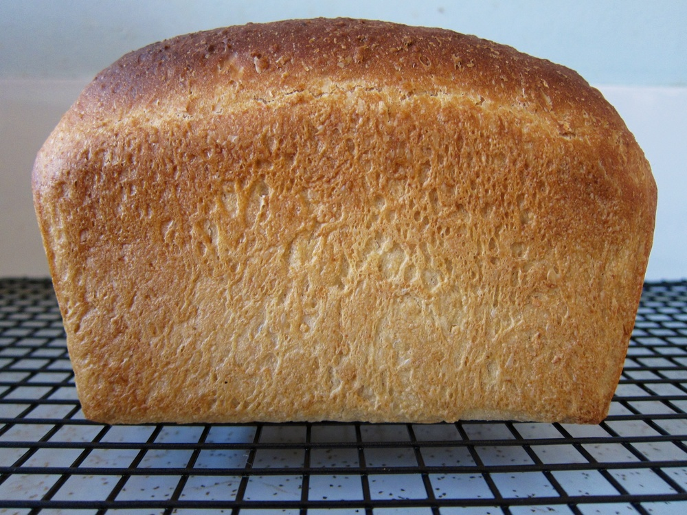 Bread_07.jpg