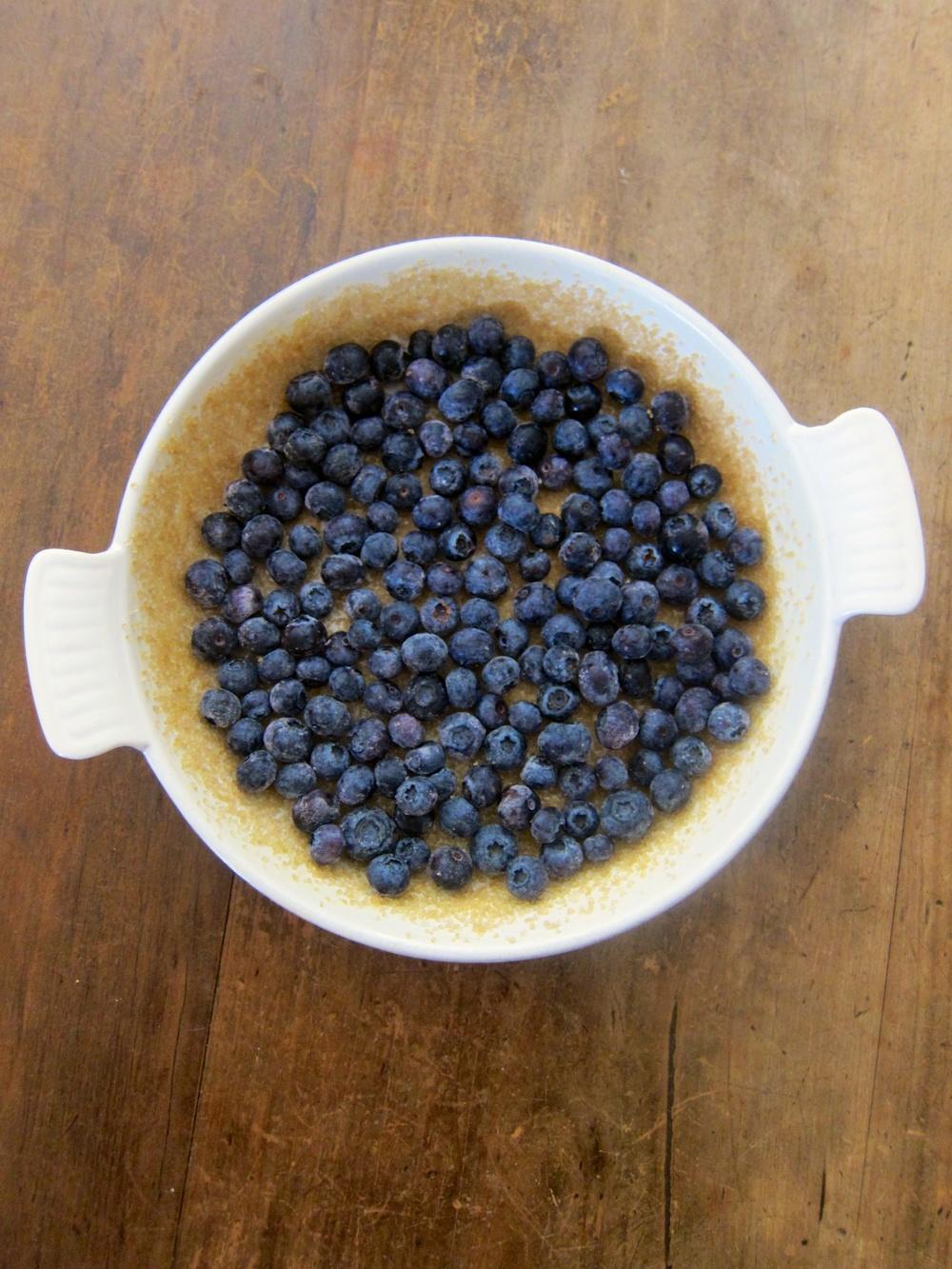BlueberryFlaugnarde_5.jpg