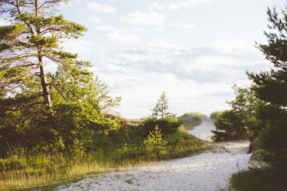 ES_16_Gotland-1