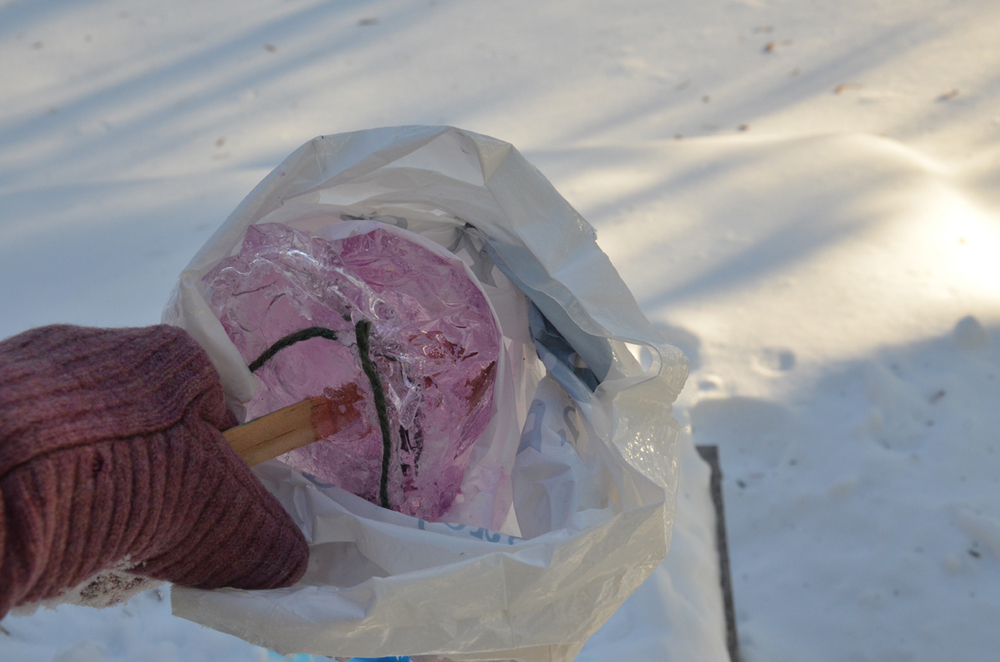 Freezing times vary with the weather. Pull the ice ornament out of the bag once frozen.