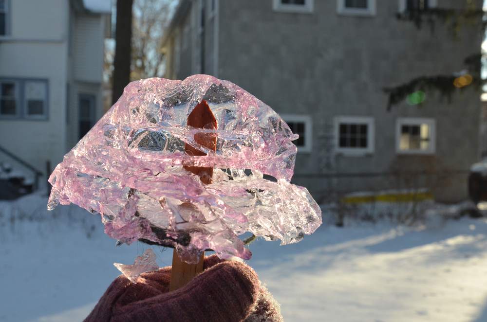 Ice Ornament