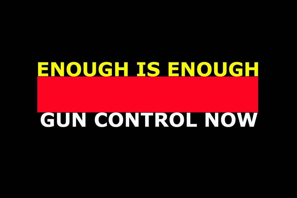 Gun control copy.jpg