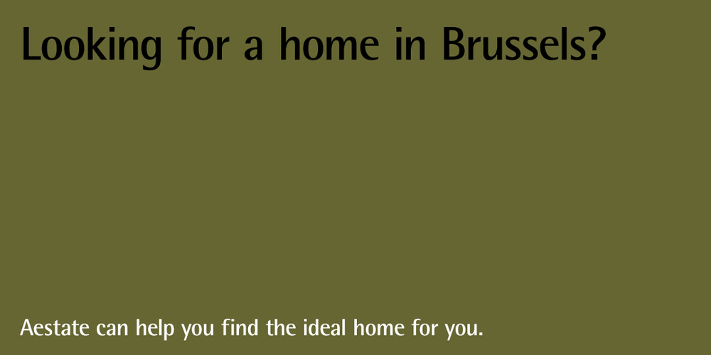 aestate-homepage-slideshow-looking-for-a-home-in-brussels.jpg
