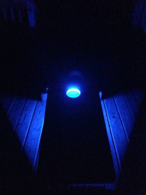 BlueCornhole Lights.JPG
