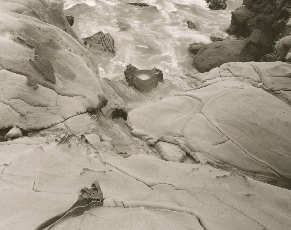 """Near Fisk Mill Cove, 2016"". 8x10 Platinum/Palladium contact print."