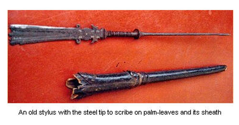 palm leaf 3xxx stylus.jpg