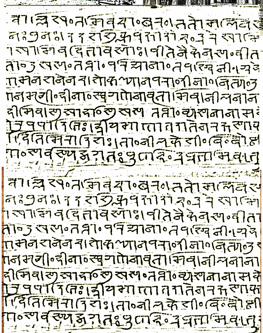 7 palm leaf page jan 21 B script.jpg