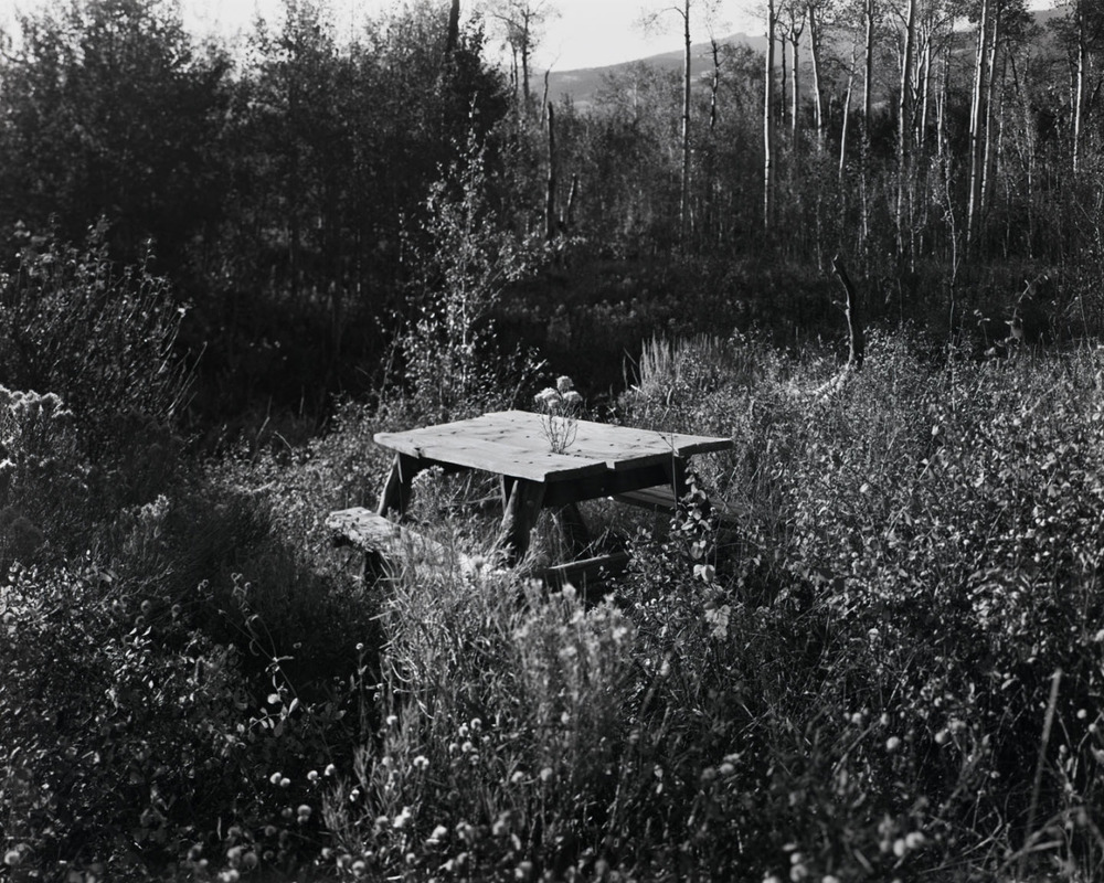 North Rim Trail Showmass Village, CO 2015 amandamollindo.com