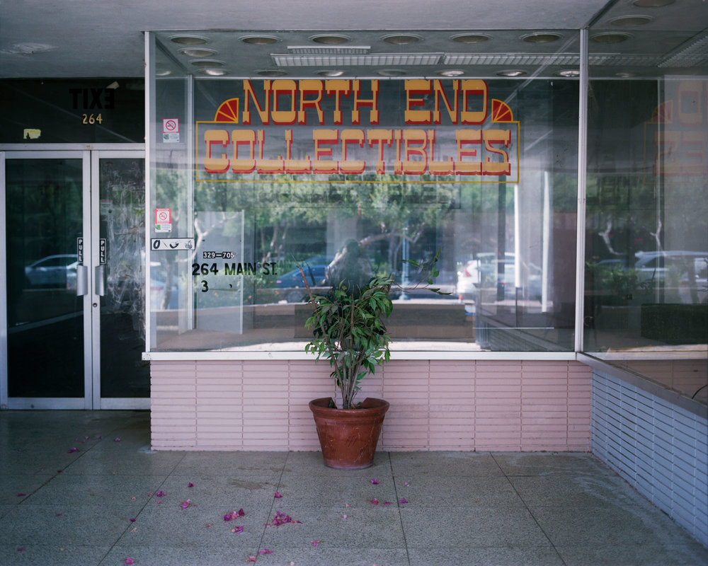 North-End-Collectibles.jpg