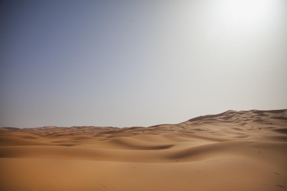 Sahara-58.jpg