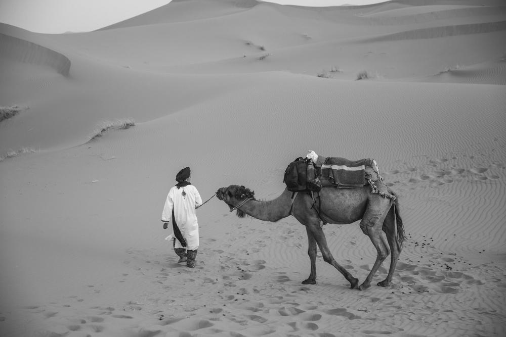 Sahara-78.jpg