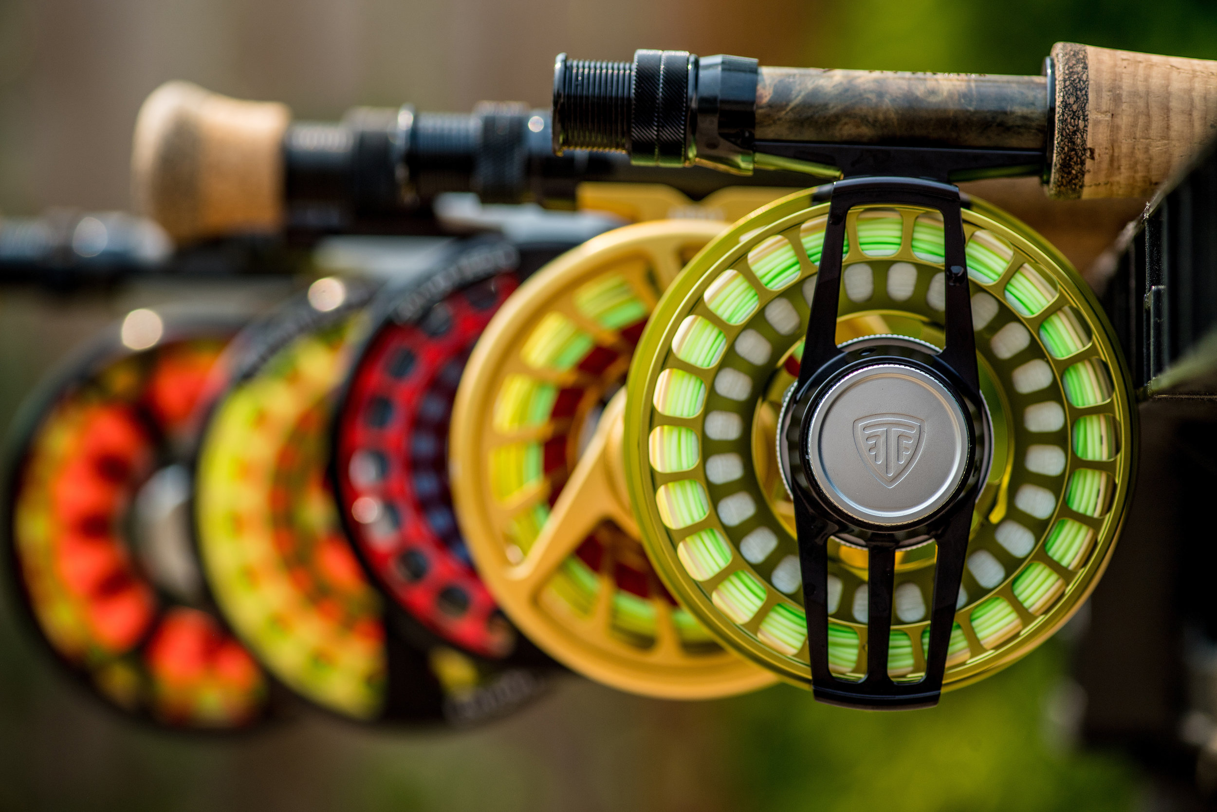 D – Taylor Fly Fishing