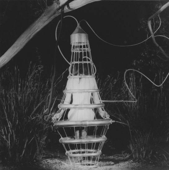 Transfusion, 2006/2016 silver gelatin print limited edition of five 4.25 x 4.25 inches