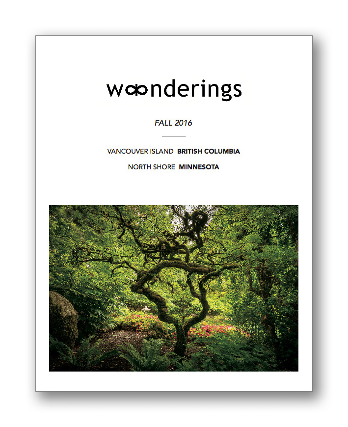 w∞nderings cover mockup.jpg