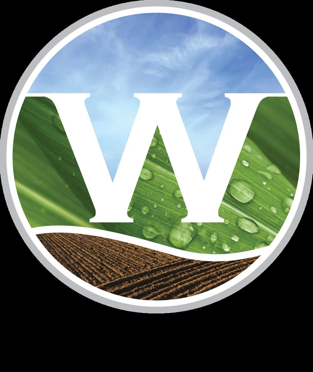 Wenkem logo (2).png