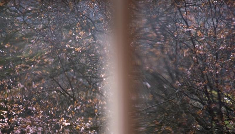 LIMINAL-PHOTO-ZANGMO-ALEXANDER.jpg