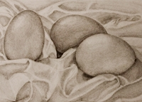 Drawing Light and Shade Workshop - Sunday 20th May, 10.00-4.00, £50.00Everyone Welcome. Materials and refreshments included.Tiny group, book now 01379 897393Learn the essential skill of creating blended gradations of light and dark shading (without smudging with fingers!) using a variety of drawing materials.Skills learned can be applied throughout all drawing and painting.