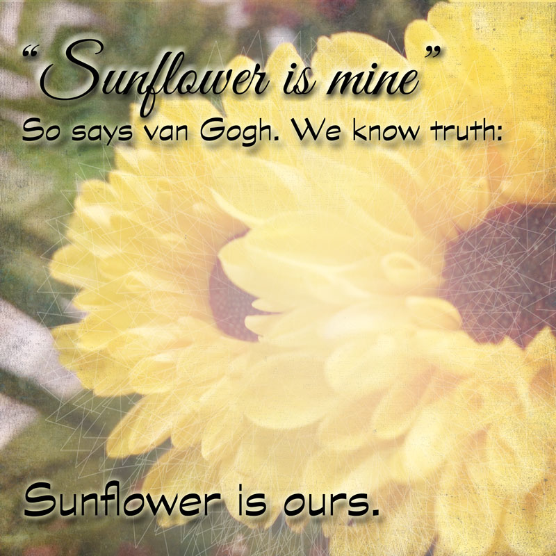 """Sunflower""  original photo and haiku by Stephanie Loomis  overlays from Design Cuts quote from Van Gogh"