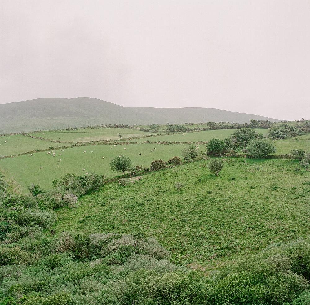 Ireland on Film (Katherine Jury) 91.JPG