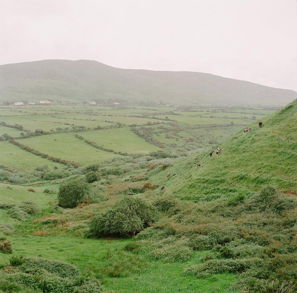 Ireland on Film (Katherine Jury) 94.JPG