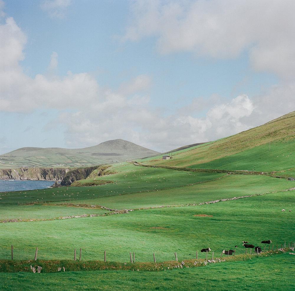 Ireland on Film (Katherine Jury) 122.JPG