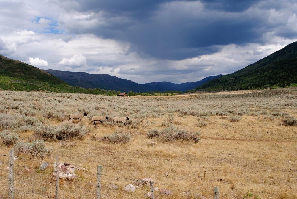 Utah_1 2012.JPG