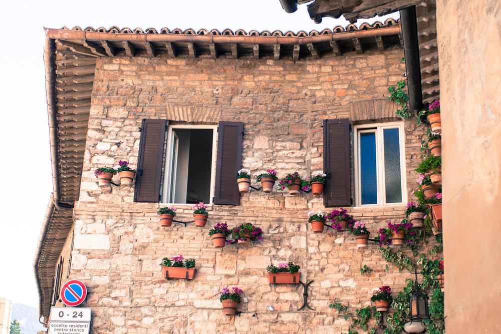 Assisi Wall