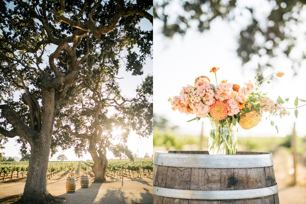 santa-barbara-elopement-wedding-planner-planning-elope-sunstone-winery-villa-tuscan-vineyard (5).jpg