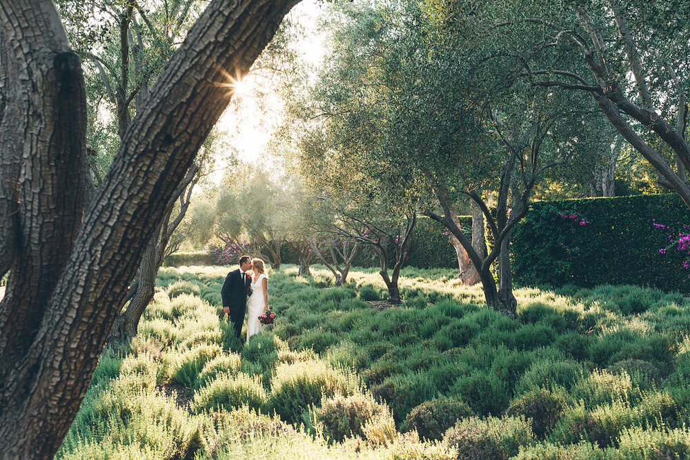 san-ysidro-ranch-wedding-elope-elopement-montecito-santa-barbara-planner-planning-coordinator-design-day-of-lavender-garden-purple-red-vintage-car-bubbles (18).jpg