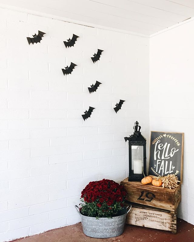 Outside its crisp and cool, inside its cozy and smells of lingering morning coffee, the perfect scene for an October Friday 🦇🍂 🎃
