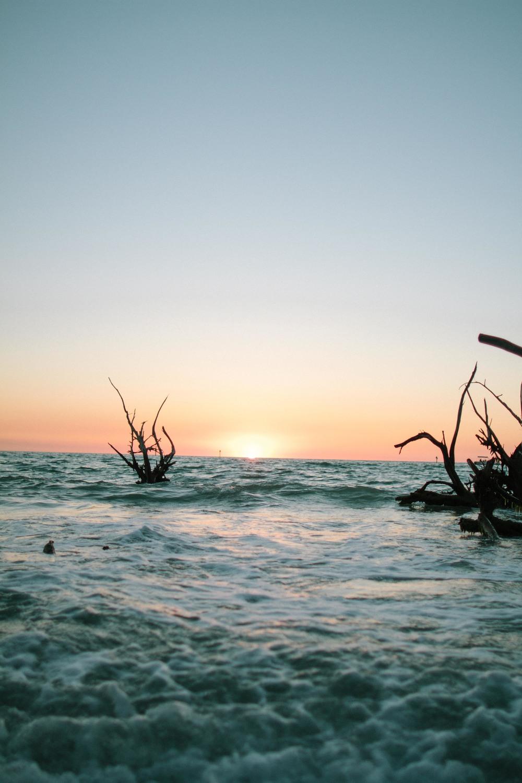FLORIDA PART I // WHATS HIDDEN BEHIND THE MANGROVES // THE ETERNAL CHILD