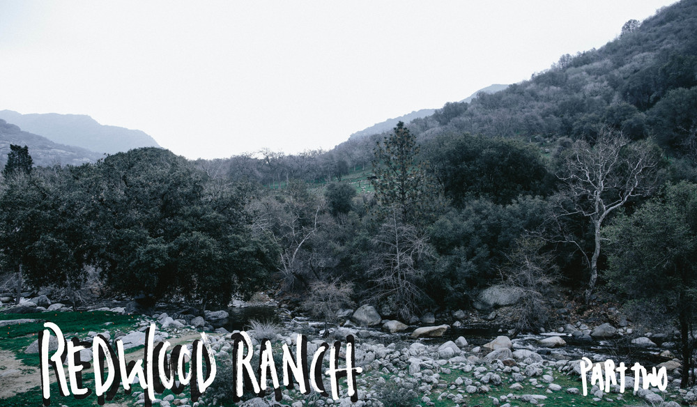 REDWOOD RANCH // THE ETERNAL CHILD