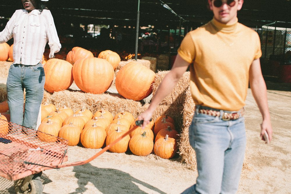 EC_PUMPKIN_PATCH-3241.jpg