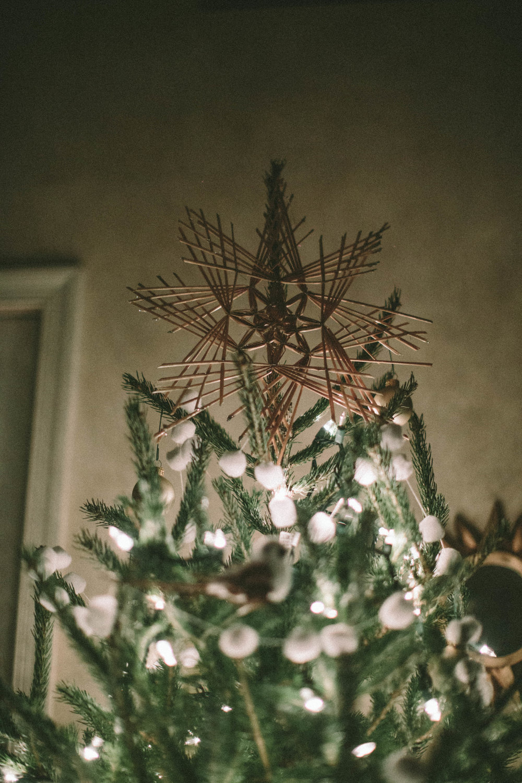 EC_WINTER CHRISTMAS-6896.jpg