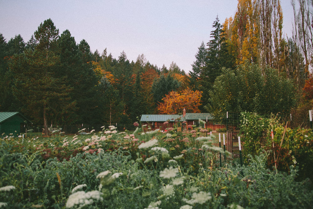 Looking-Glass House & Farm    located in Forest Grove, Or