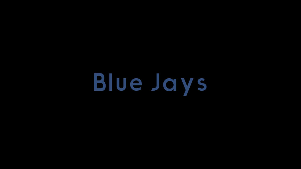 Blue Jays - Treatment
