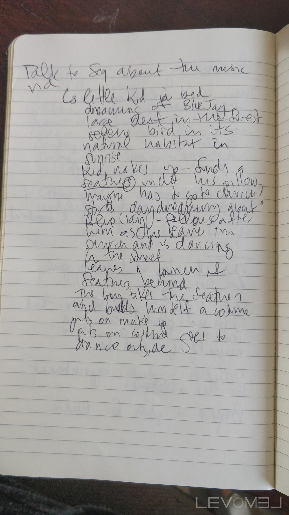 Blue Jays Journal Entry