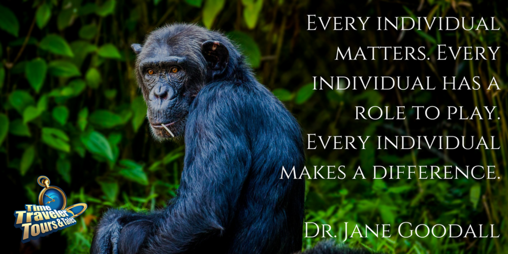 Twitter Quote Jane Goodall.png
