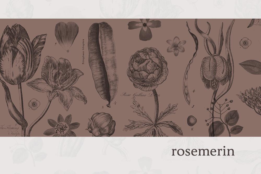 rosemerin.jpg
