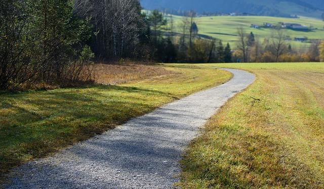 Dunbar Walks