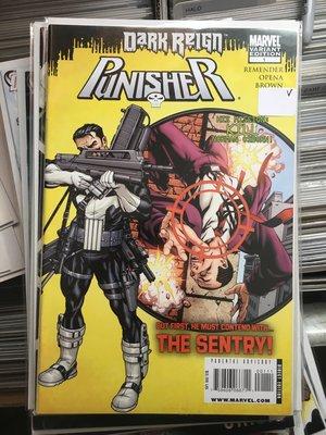 Punisher Vs Sentry