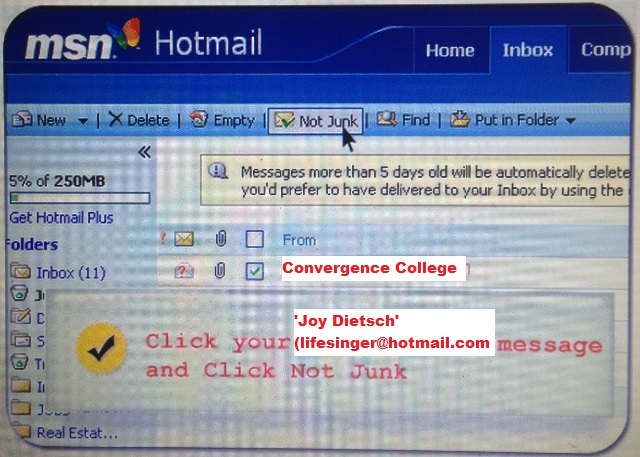 Stop the Spam Box catching our Newsletter emails.... Validate our emails by adding to your address book.