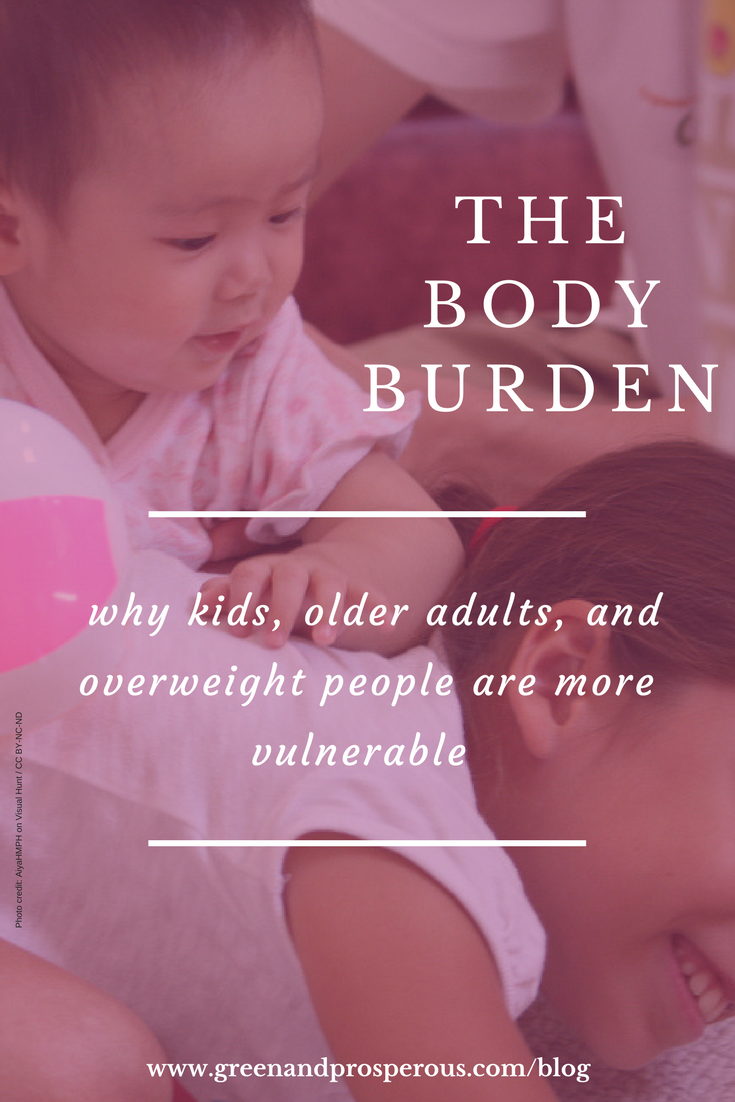 The Body Burden.png