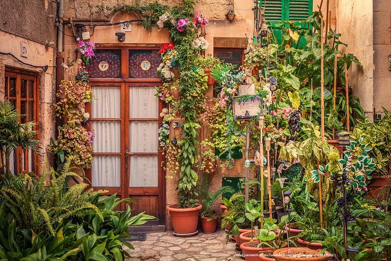 container gardening, vertical garden