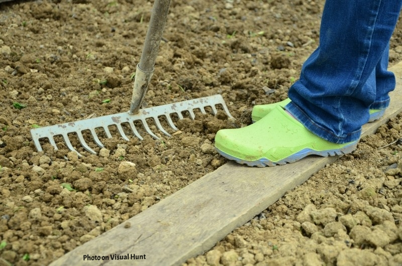 things you're doing wrong in your garden